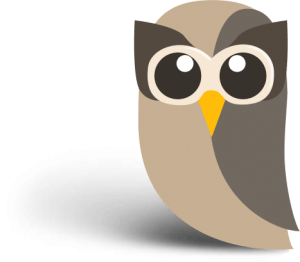 Hootsuite - Content Manager for Social Networks