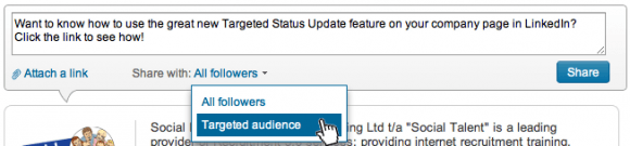 Targeted-Audience-Company-Status-Update-LinkedIn