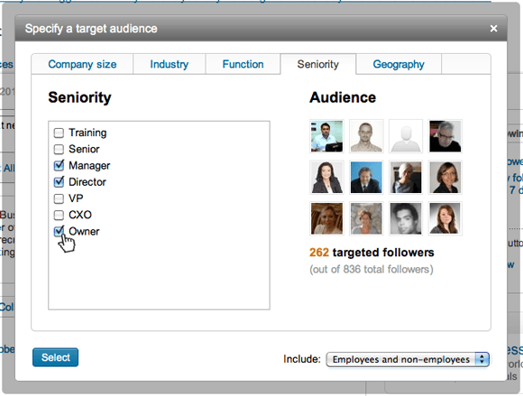 Targeted-Audience-Selection-Company-Page-LinkedIn