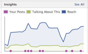 Facebook Analytics (Insights)