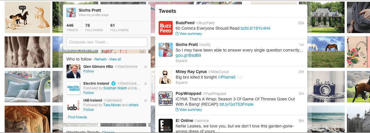 Screen Shot Twitter Bkgd