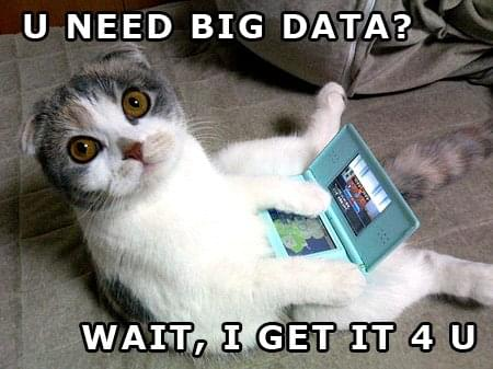 Big Data Kitty | BIG DATA: What's the BIG deal?