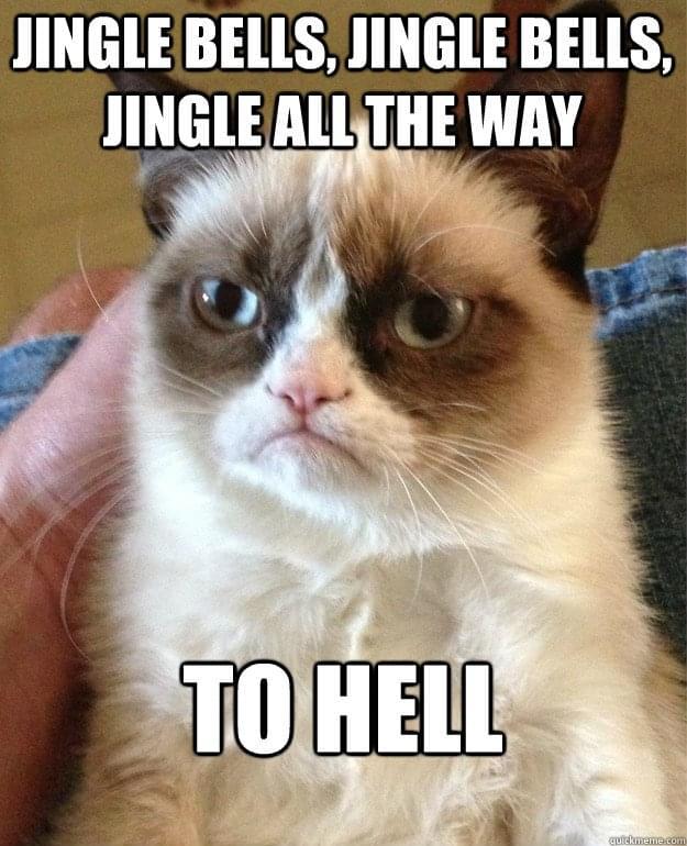 Jingle Bells Grumpy Cat | Job Seekers