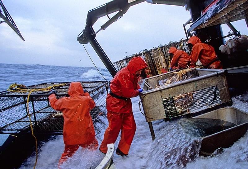 Alaskan Crab Fisherman