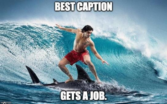 Best Caption Gets a Job