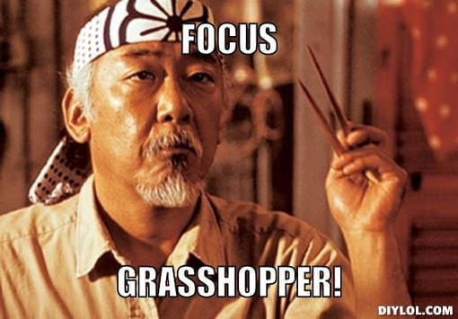 mr-miyagi-focus-meme-generator-focus-grasshopper-5e64b5