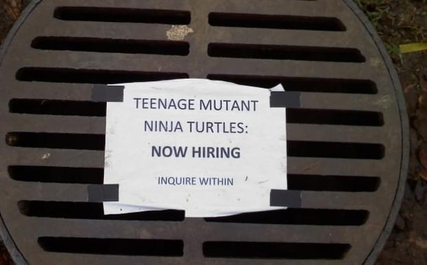 Teenage Mutant Ninja Turtles | Recruitment Meme